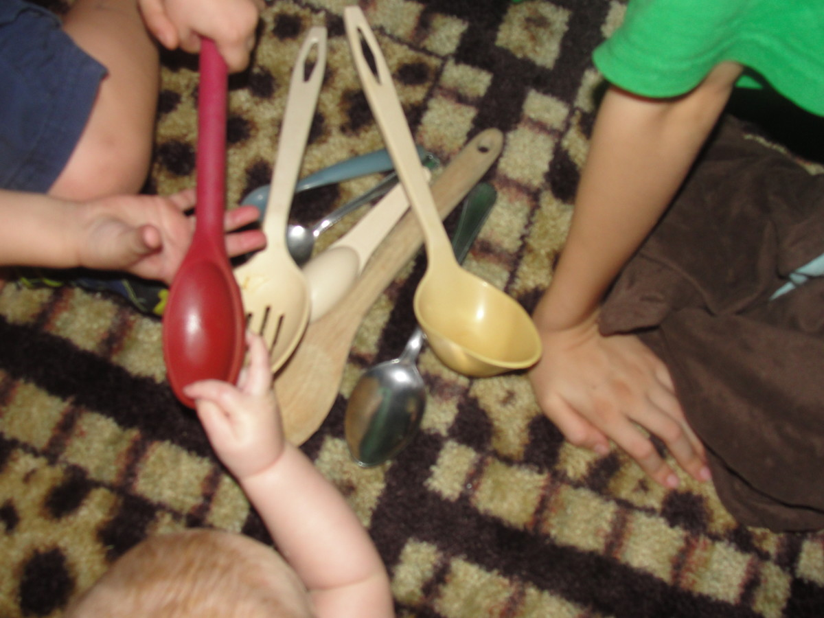 Naming spoons using the binomial nomenclature system