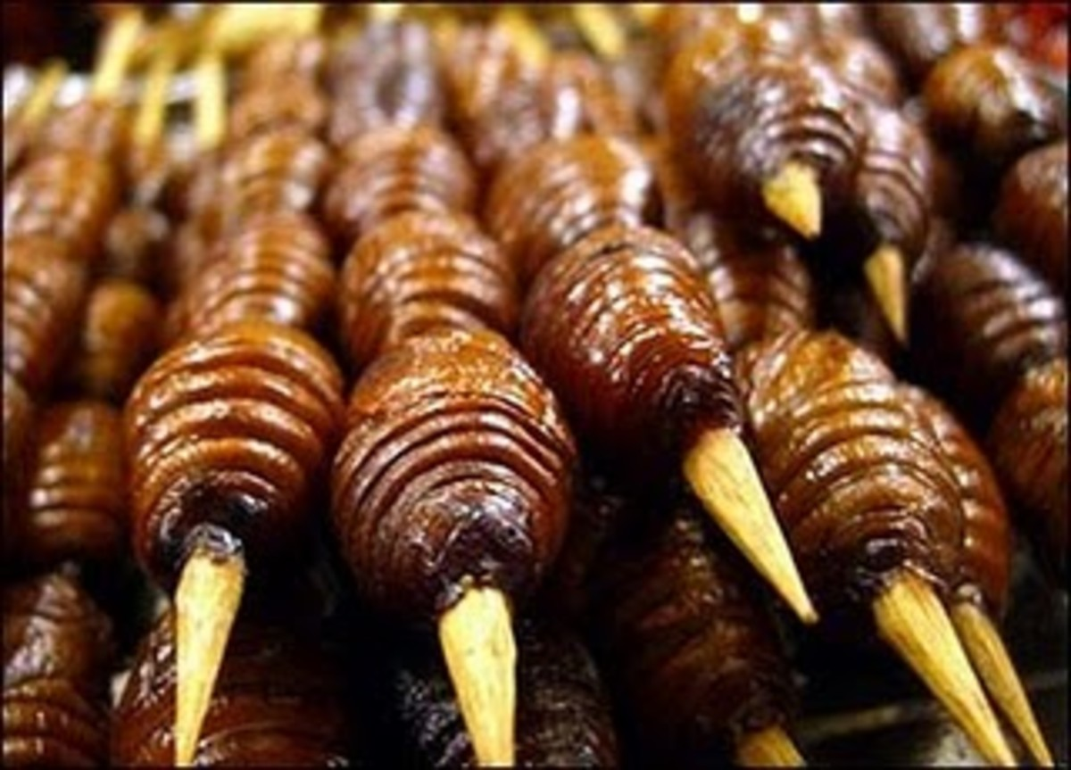 Silk worm larvae on a skewer