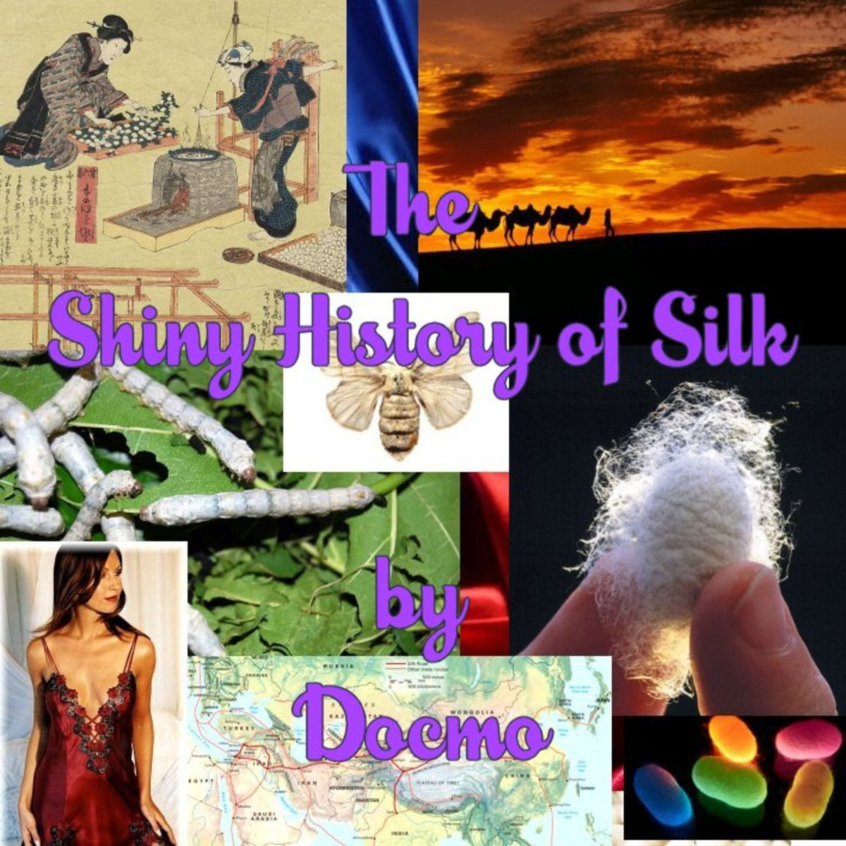 Shiny History of Silk