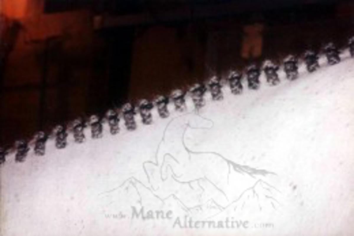 Hunter Braids - Grey Large Pony