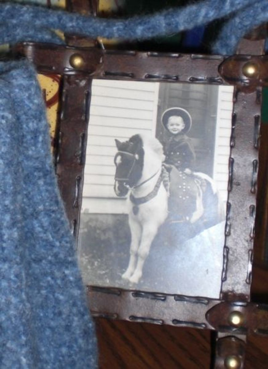 1950's Pony Photographer