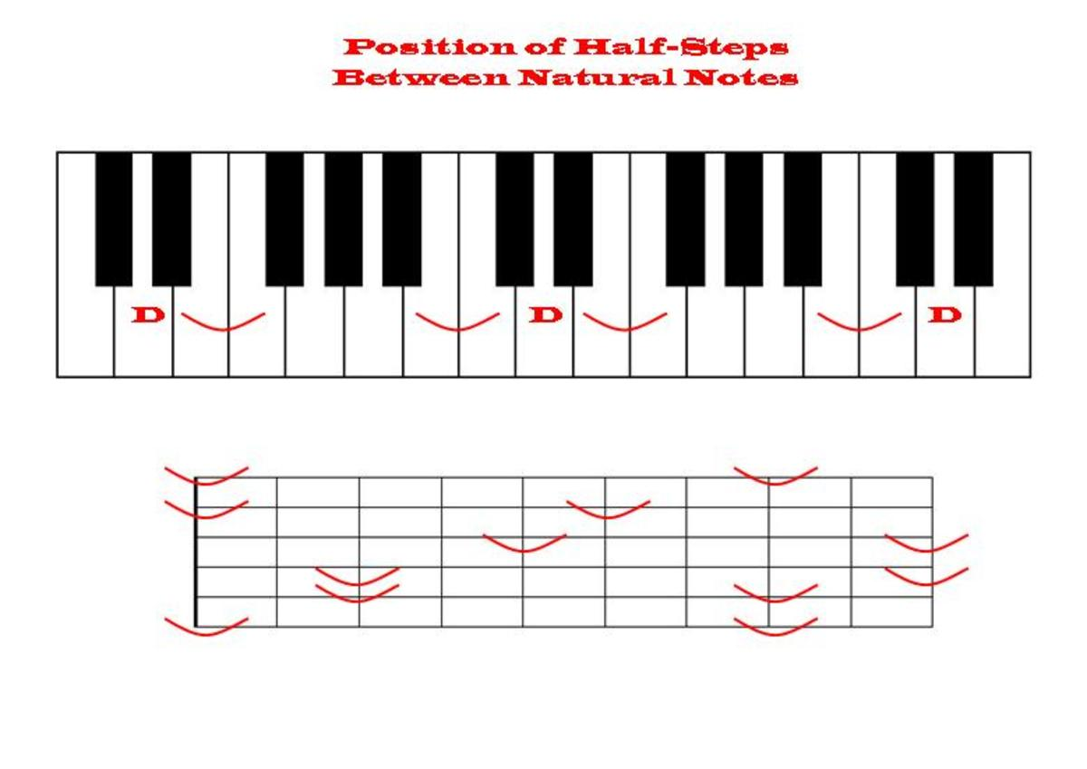 Half-steps between natural notes are easier to see on a keyboard than on a fretboard.