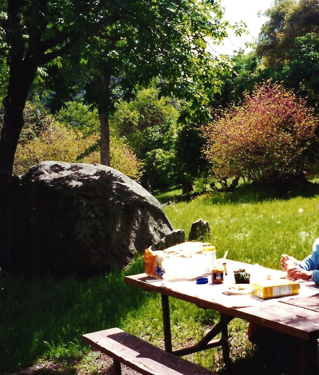 Great picnic spot