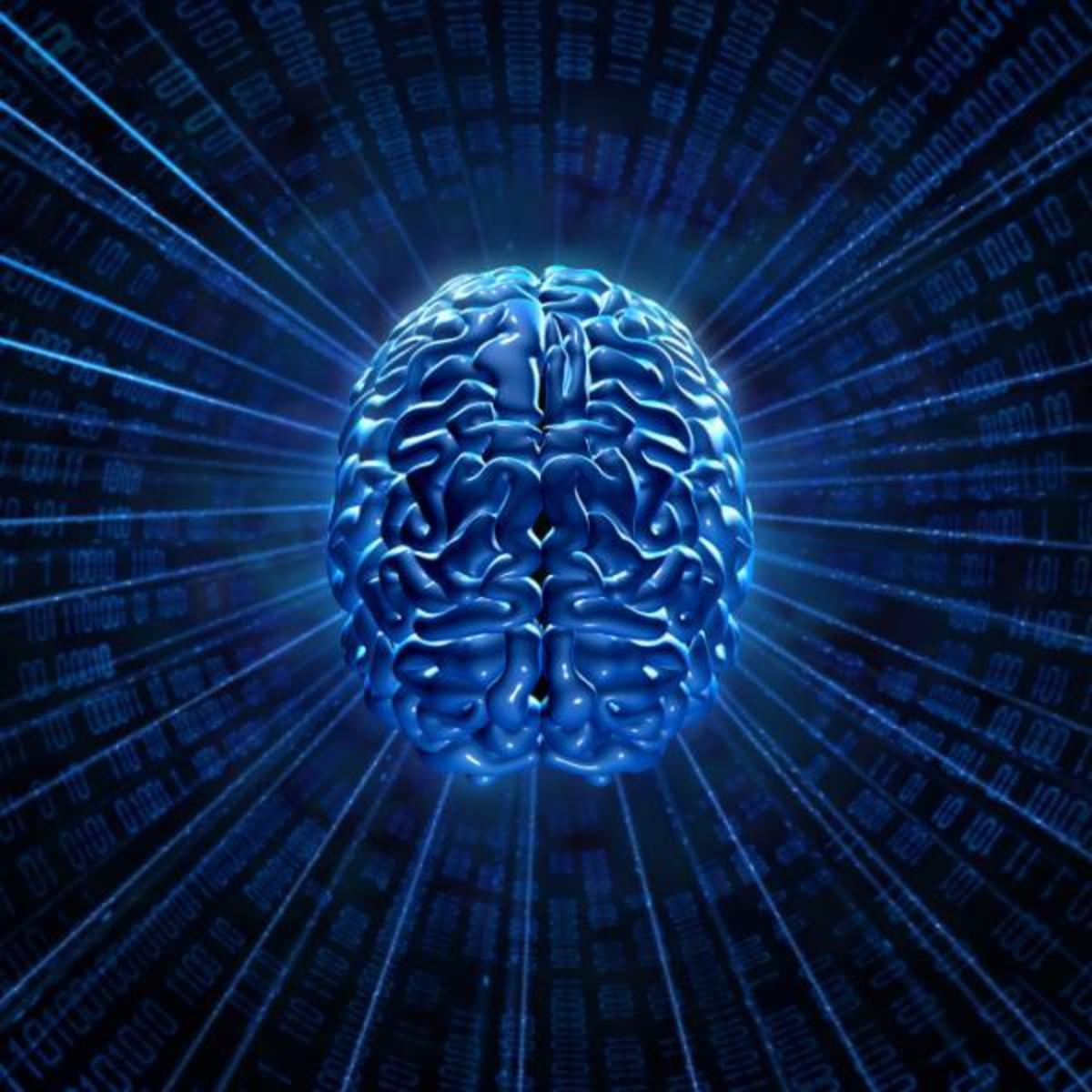 Scientists are studying the wiring of the human brain. Circuit tracing method allows studying of incoming and outgoing signals from any two brain centers; they can look aat up to four links in a circuit. They see that as their technological innovatio