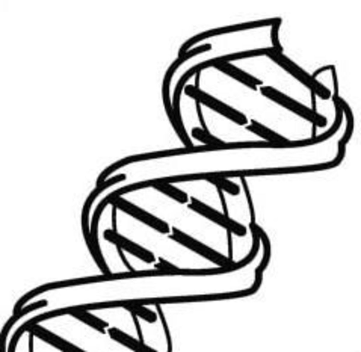 Genetics: Labs, Videos, and Information For High School Students