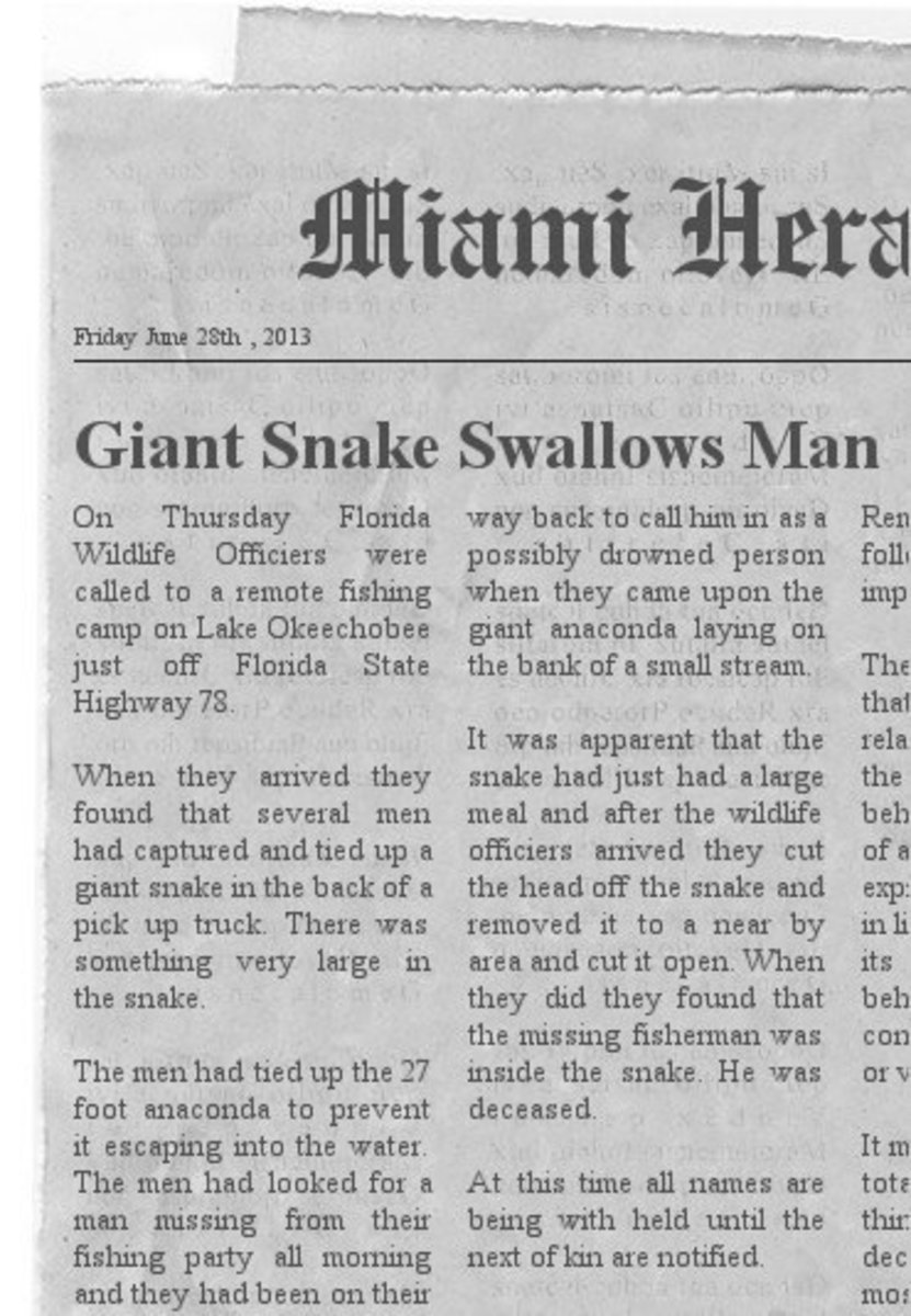 Amazing Snakes Including Snake Swallows Man