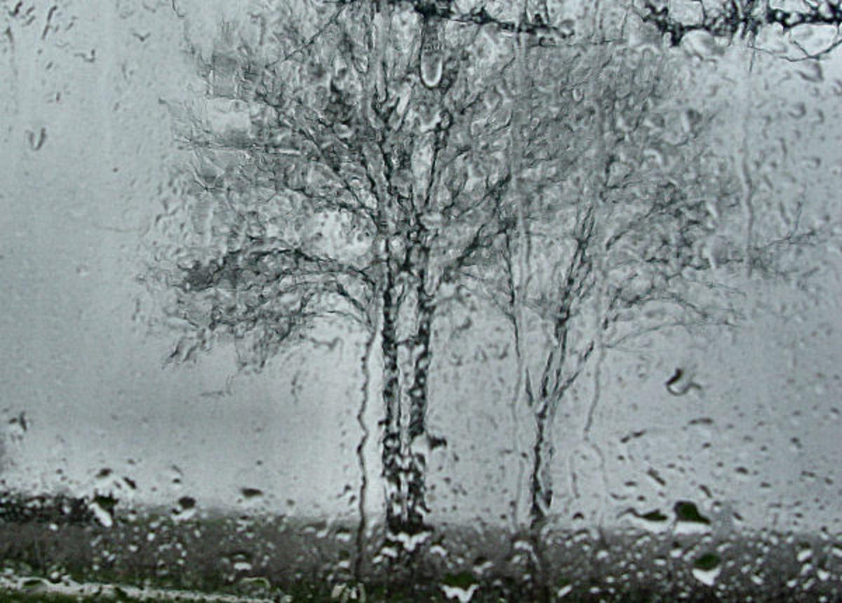 Rain against the window