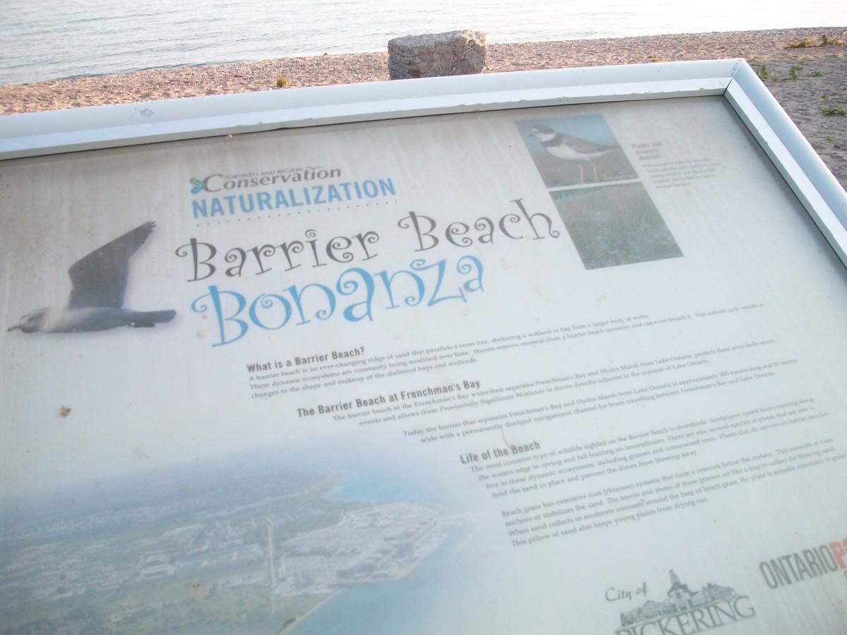 Information panel, Pickering Barrier Beach