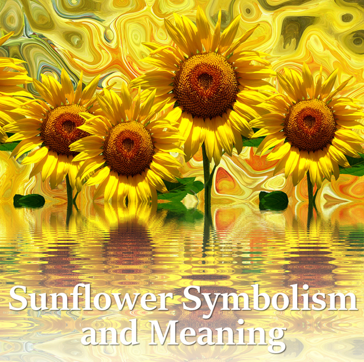 Sunflower Symbolism And Meaning Hubpages