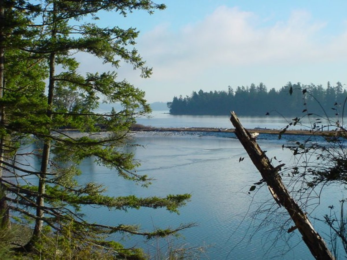 A view of Carr inlet and Reeder Spit in Lakebay