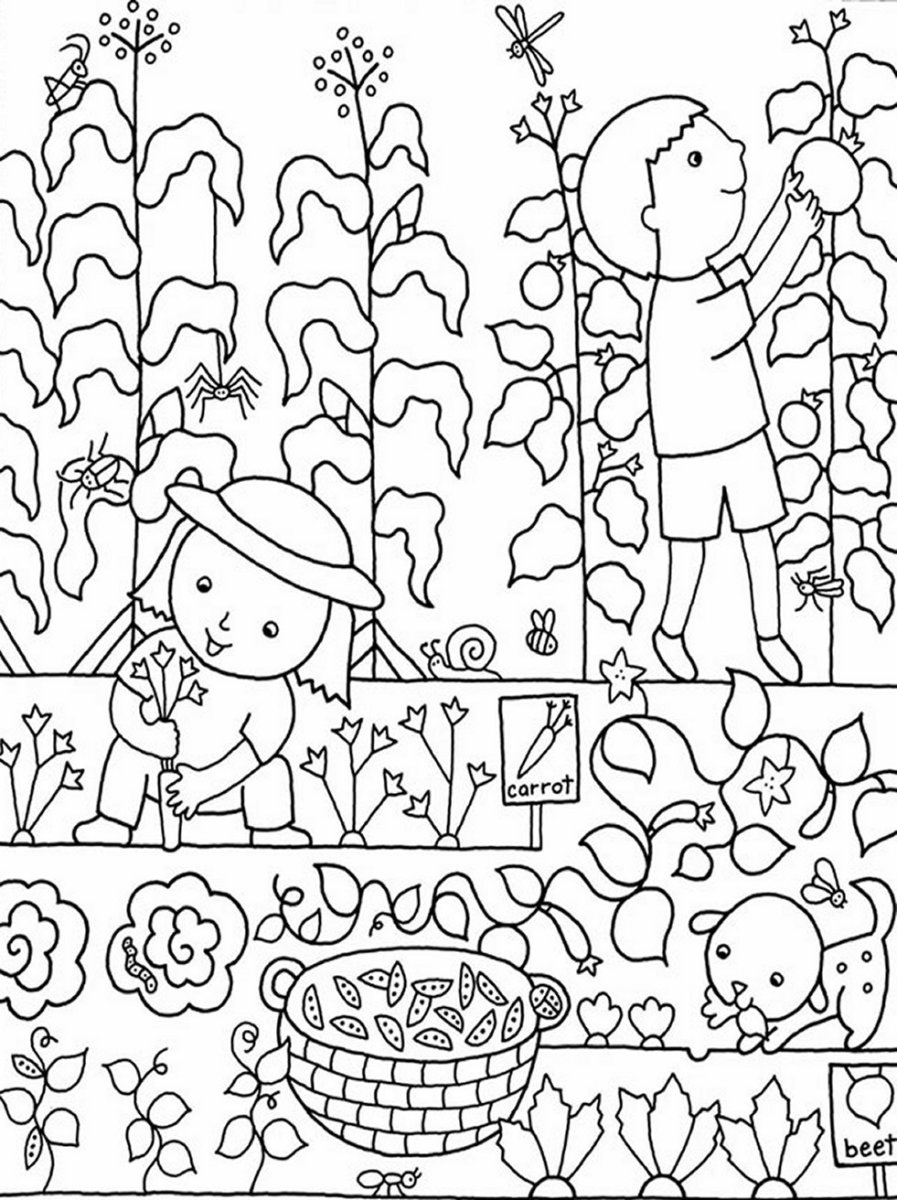vegetable garden coloring Vegetable Garden Coloring Page