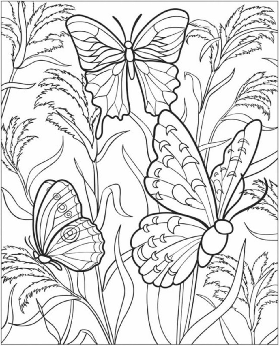 coloring pages free horticulture - photo#38