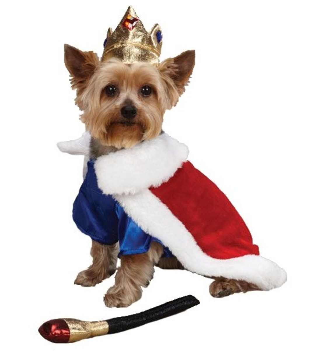 Royal Prince Pet Costumes
