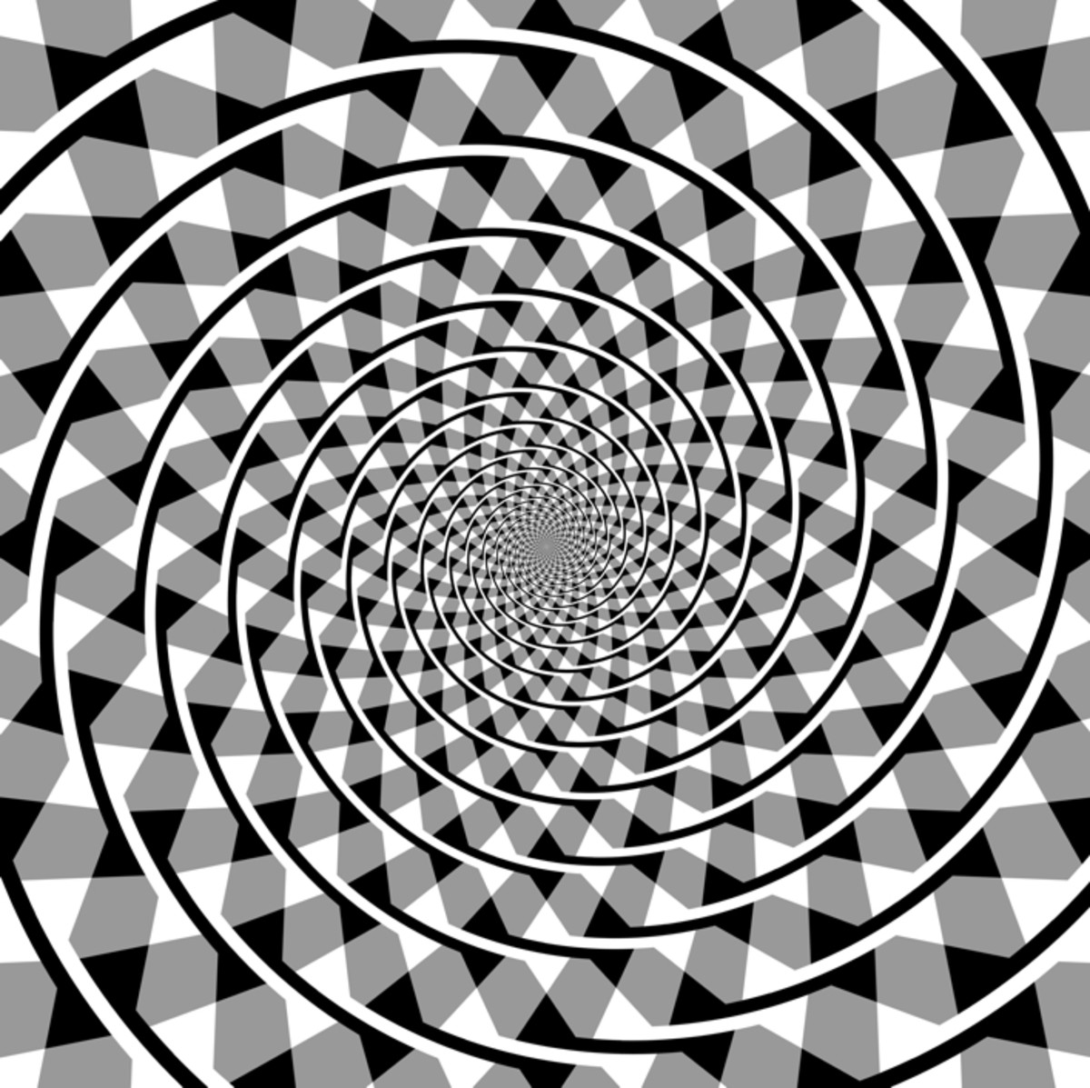 Fraser spiral optical illusion