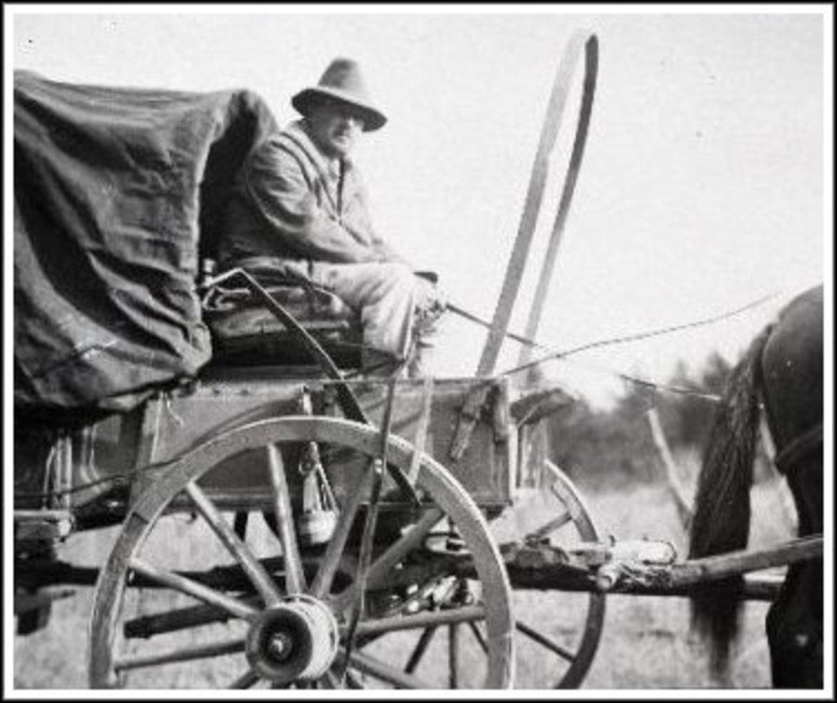 Driving a wagon through the Ozarks.