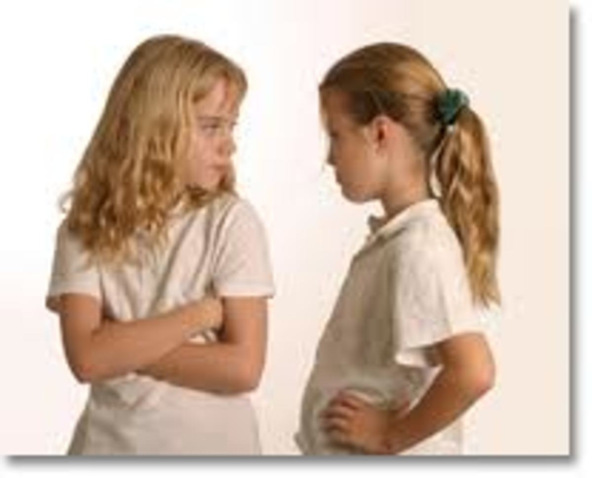 The constant competition for parental attention oftentimes bring out less than positive feelings among siblings.  Such feelings can include animosity and jealousy.