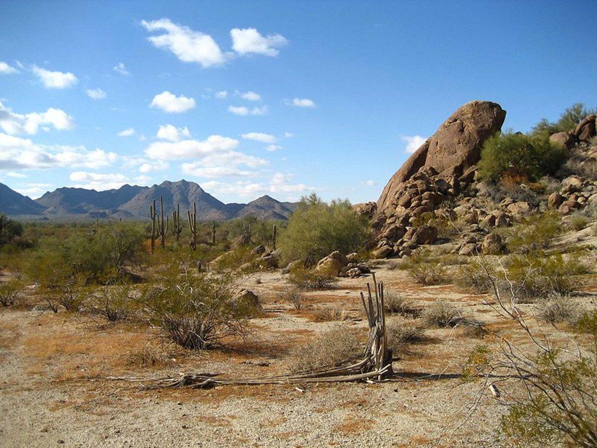 Coastal Desert of Sonoran