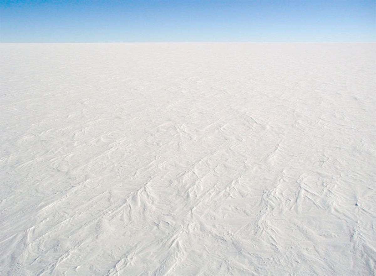 The Antarctic Desert