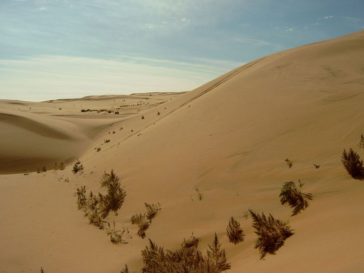 The Gobi Desert is also considered a Cold Desert.