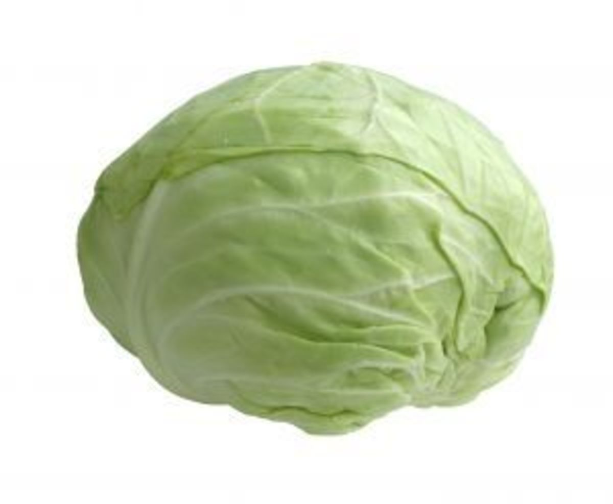 Cabbage is an excellent sulfur source.