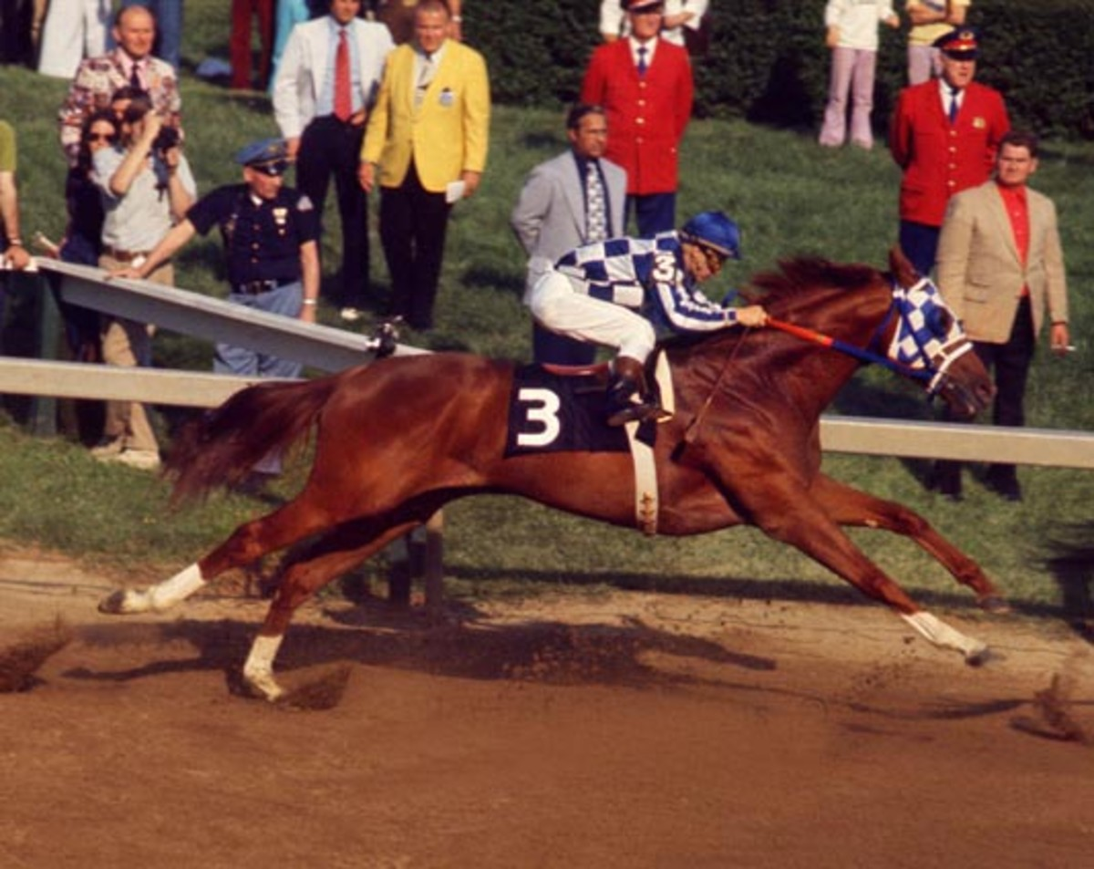 Secretariat is fully stretched as he wins the  Preakness Stakes in 1973