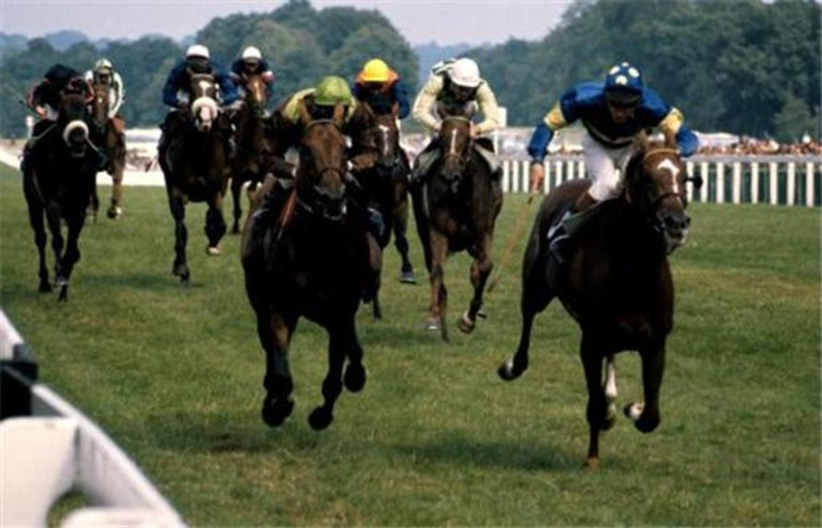 Grundy, left, chases Bustino in the King George VI in 1975
