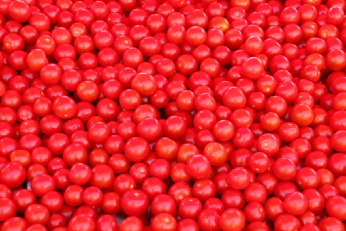 Cherry tomatoes for pasta sauce!