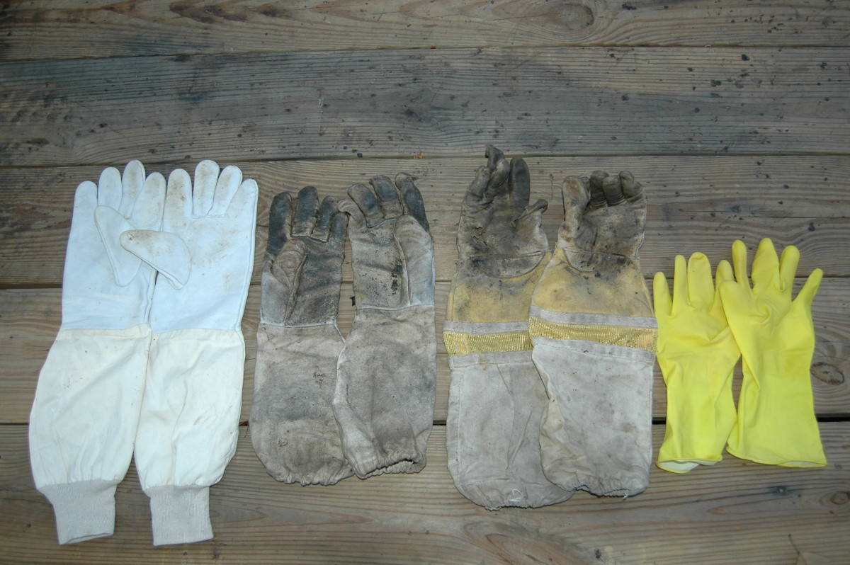 Beekeeping gloves of different styles. Note that, except for the plastic gloves, they all extend up the forearm.