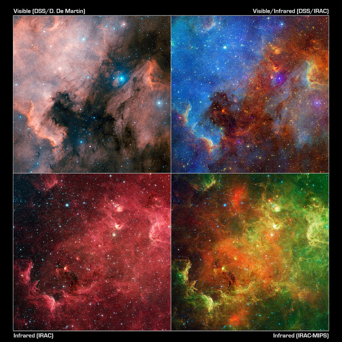 Using various combinations of infrared and visible observations from NASA's Spitzer Space Telescope and the Digitized Sky Survey, the appearance of the North American nebula drastically changes.