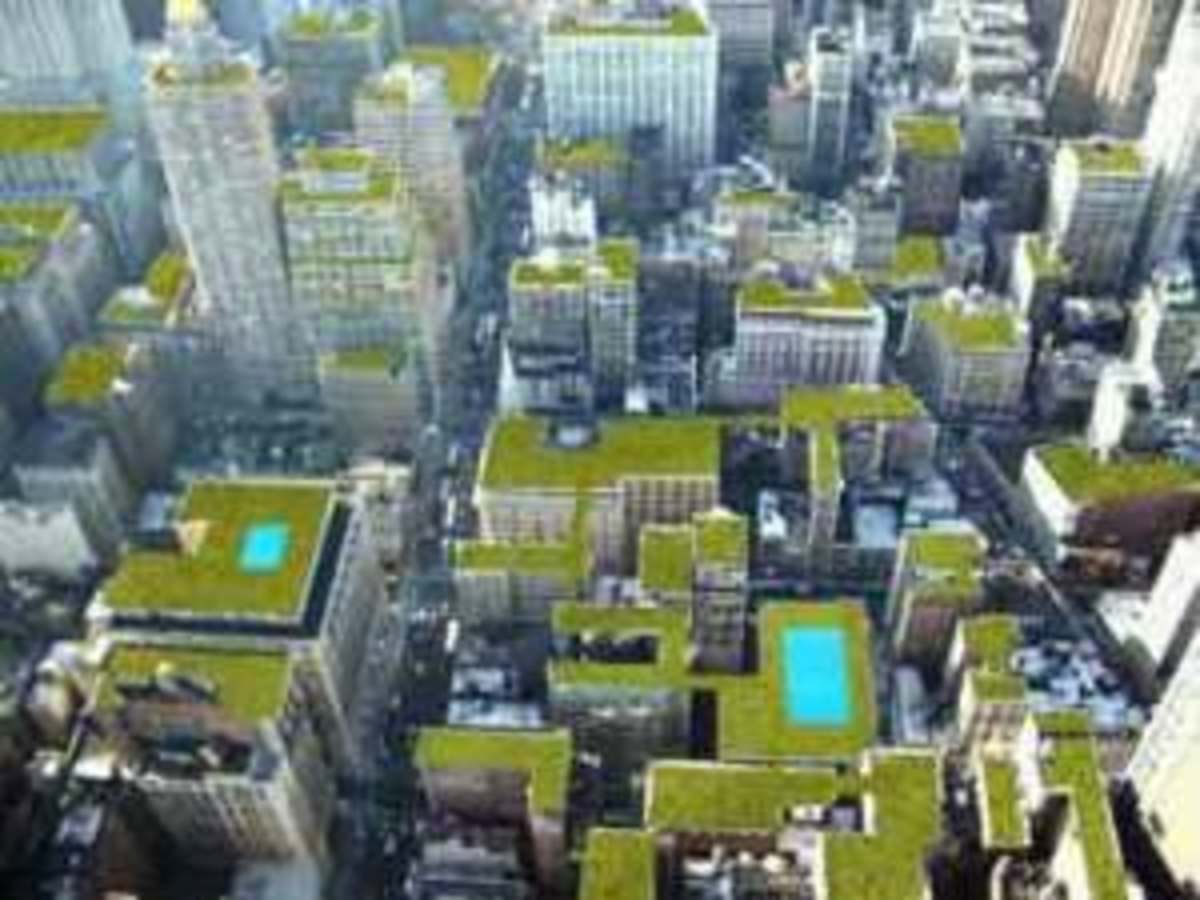 New York City greenscape on their rooftops
