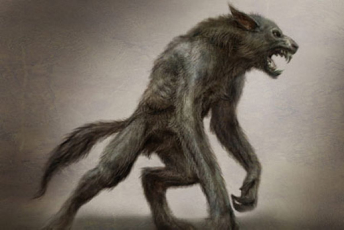 A very accurate depiction of what I consider a lycanthrope, tail and all.