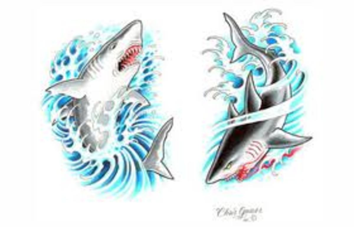 shark-tattoos-and-shark-tooth-tattoos-with-images-history-and-meanings-popular-tattoos