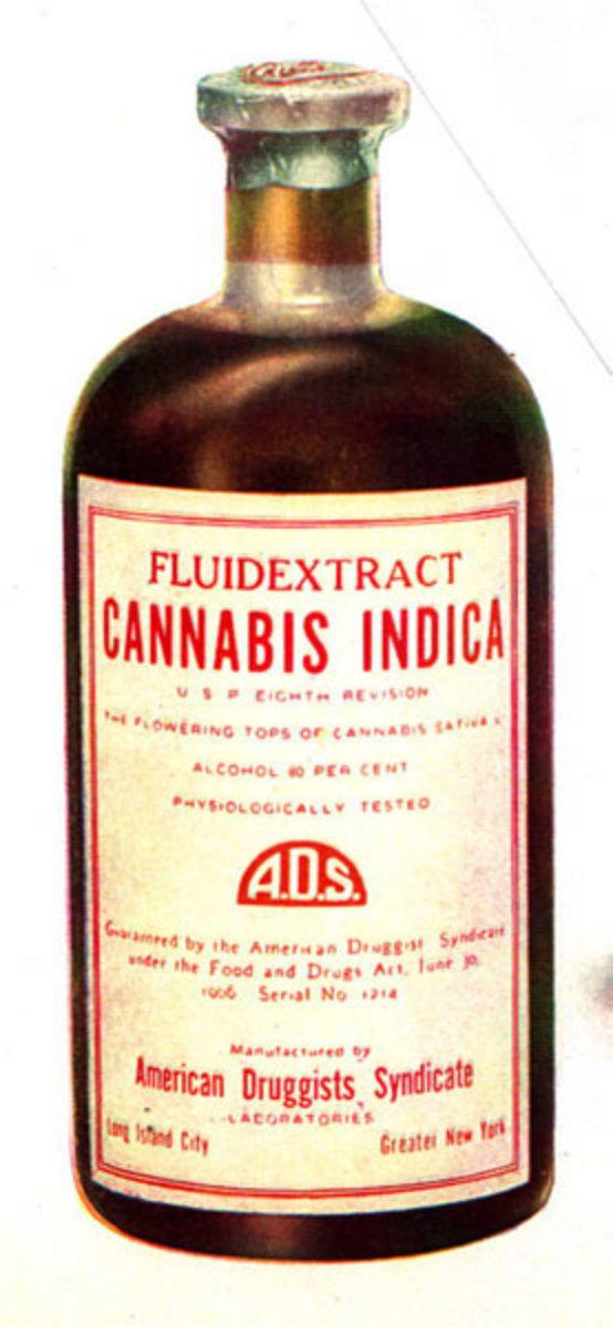 Marijuana tincture containing cannabis buds and alcohol