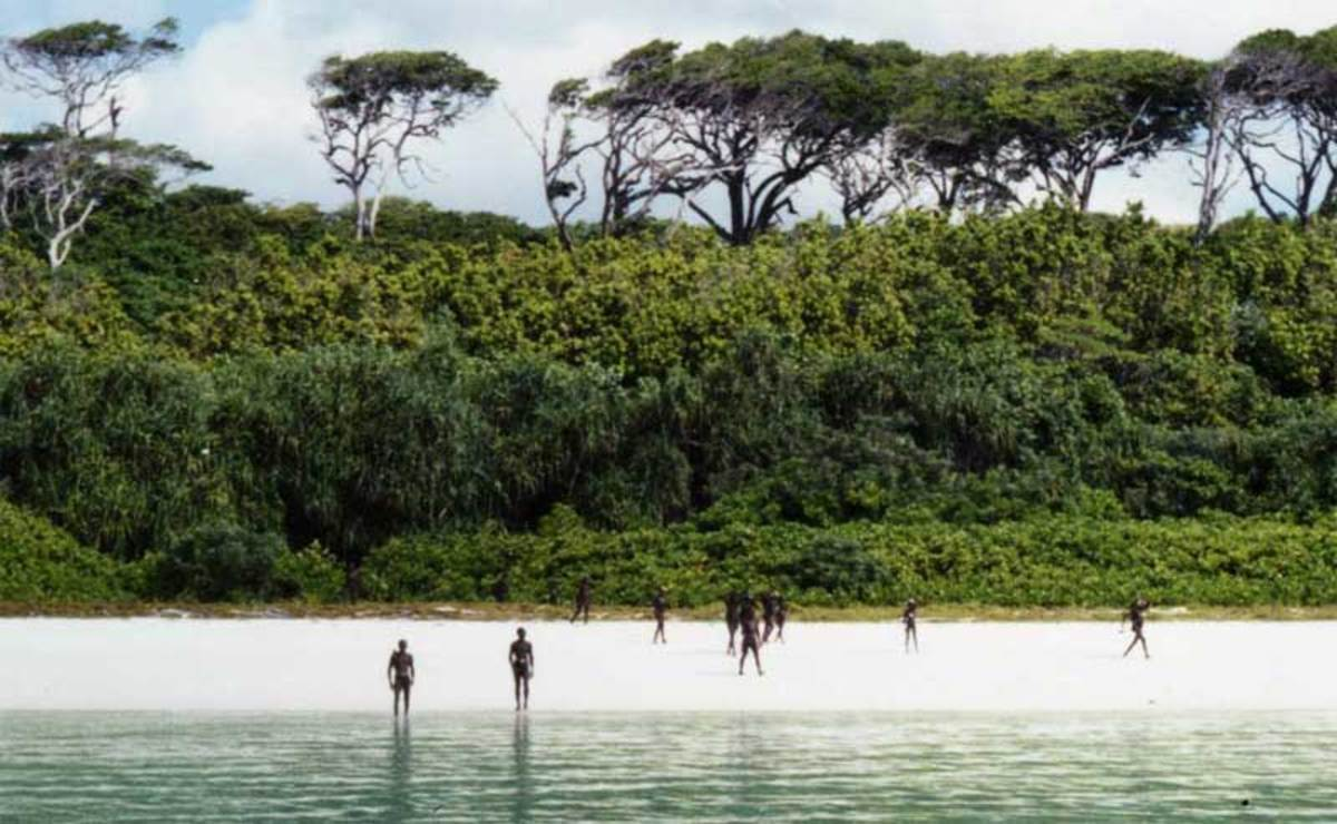 The Sentinelese standing in the backdrop of their Forest home.