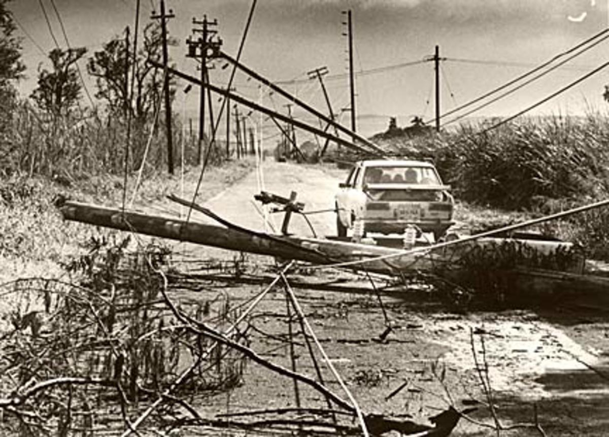 Hurricane Iwa - 1982 Category 1