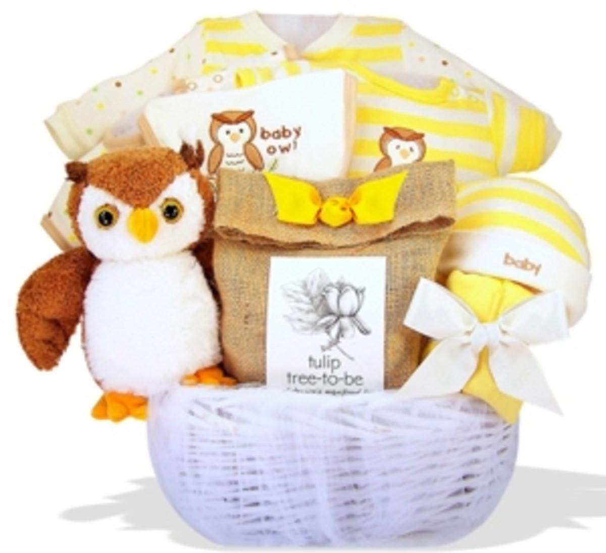 Owl Baby Gift Basket