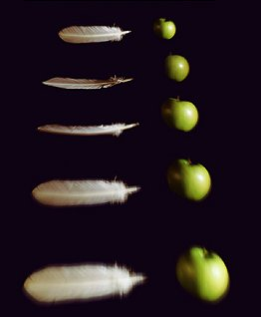 Fig. 3. Feather and apple falling in vacuum chamber. One may be surprised with this fact since our intuition is based on our experience with atmosphere.