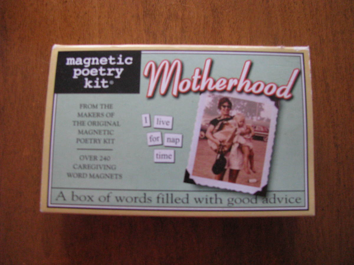 Motherhood Magnetic Poetry Set I used. Any set would work.