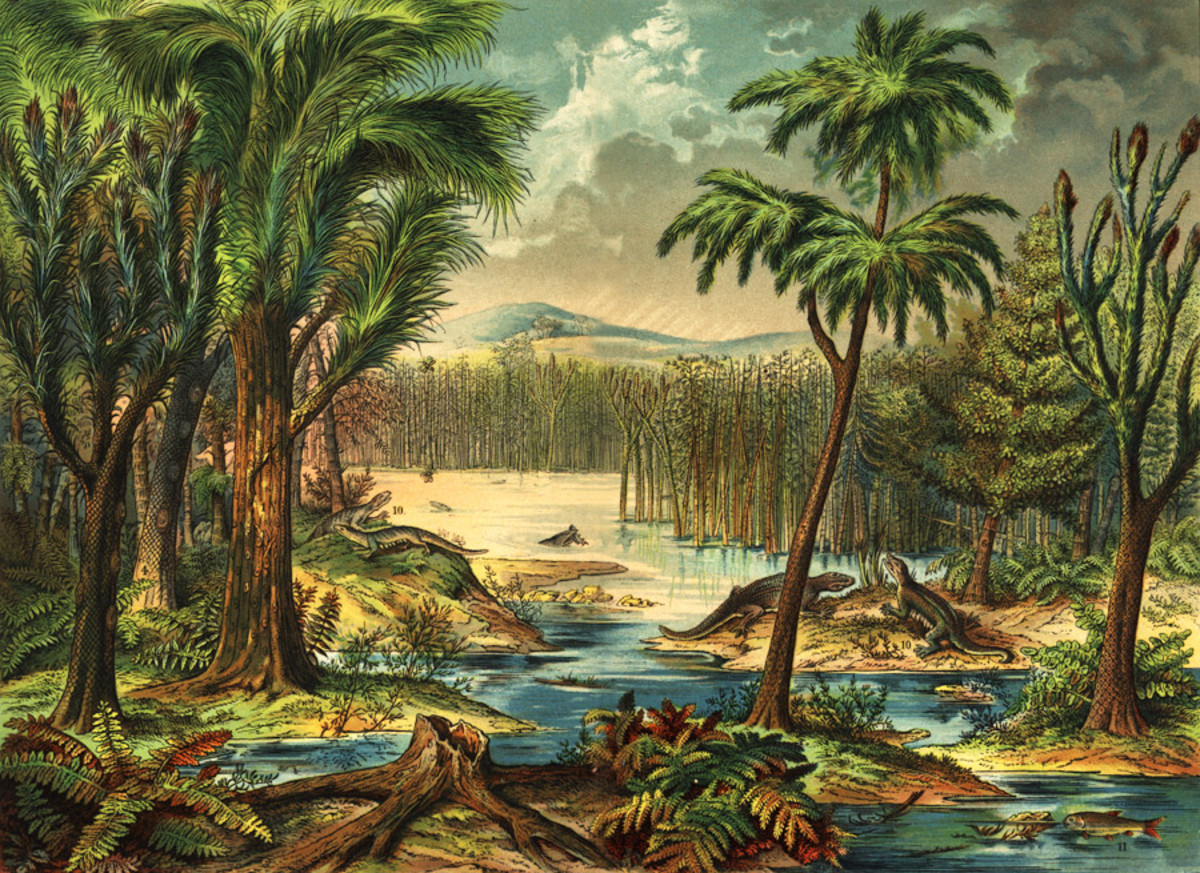 how-was-the-earth-300-million-years-ago