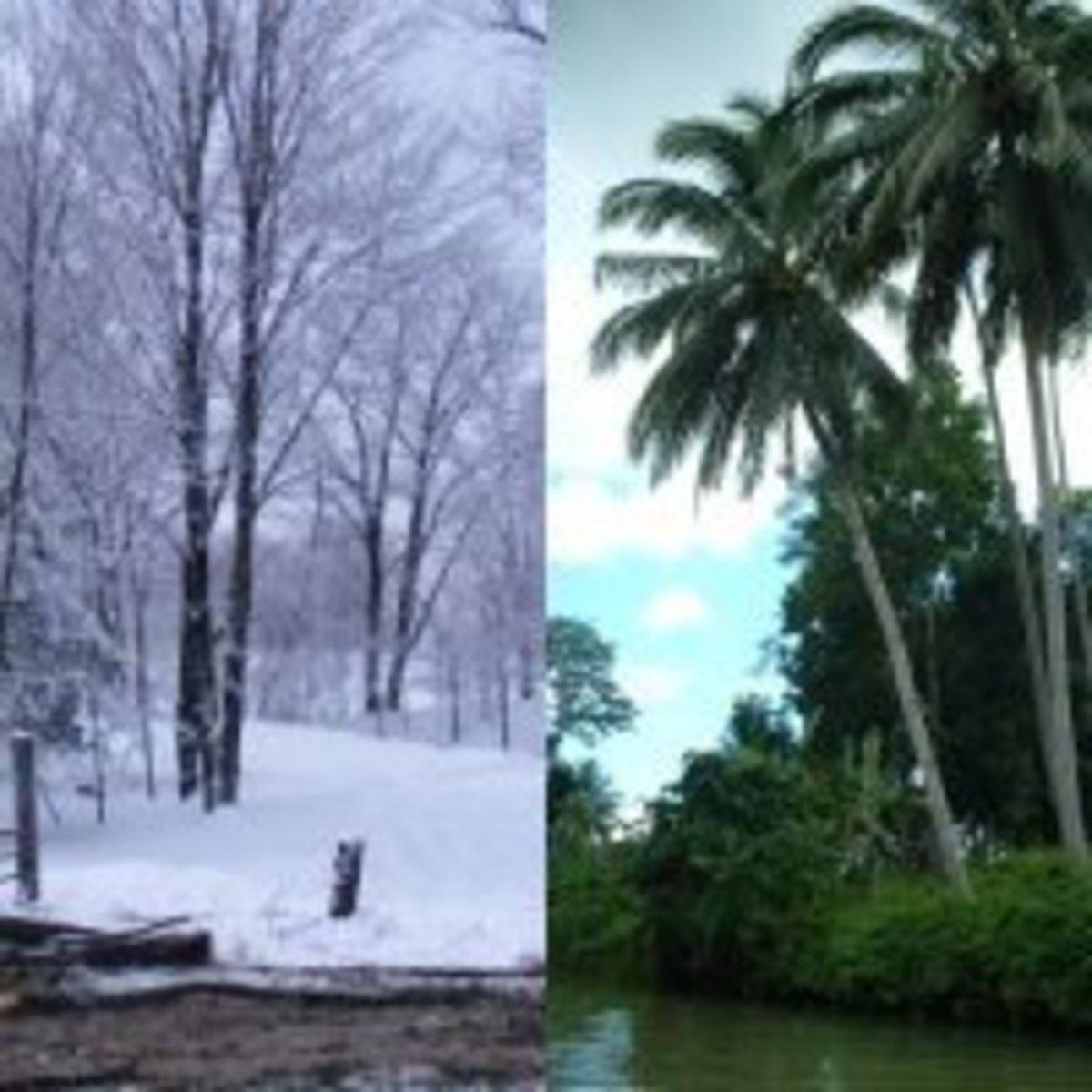 Climate change 9620 BC. Tropics copyright Rod Martin, Jr. Snow courtesy Morguefile.com (public domain).