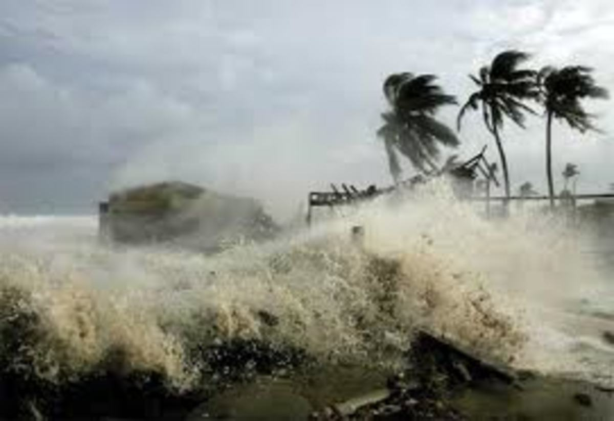 A Hell of a Year Ahead. Hurricane Warnings.