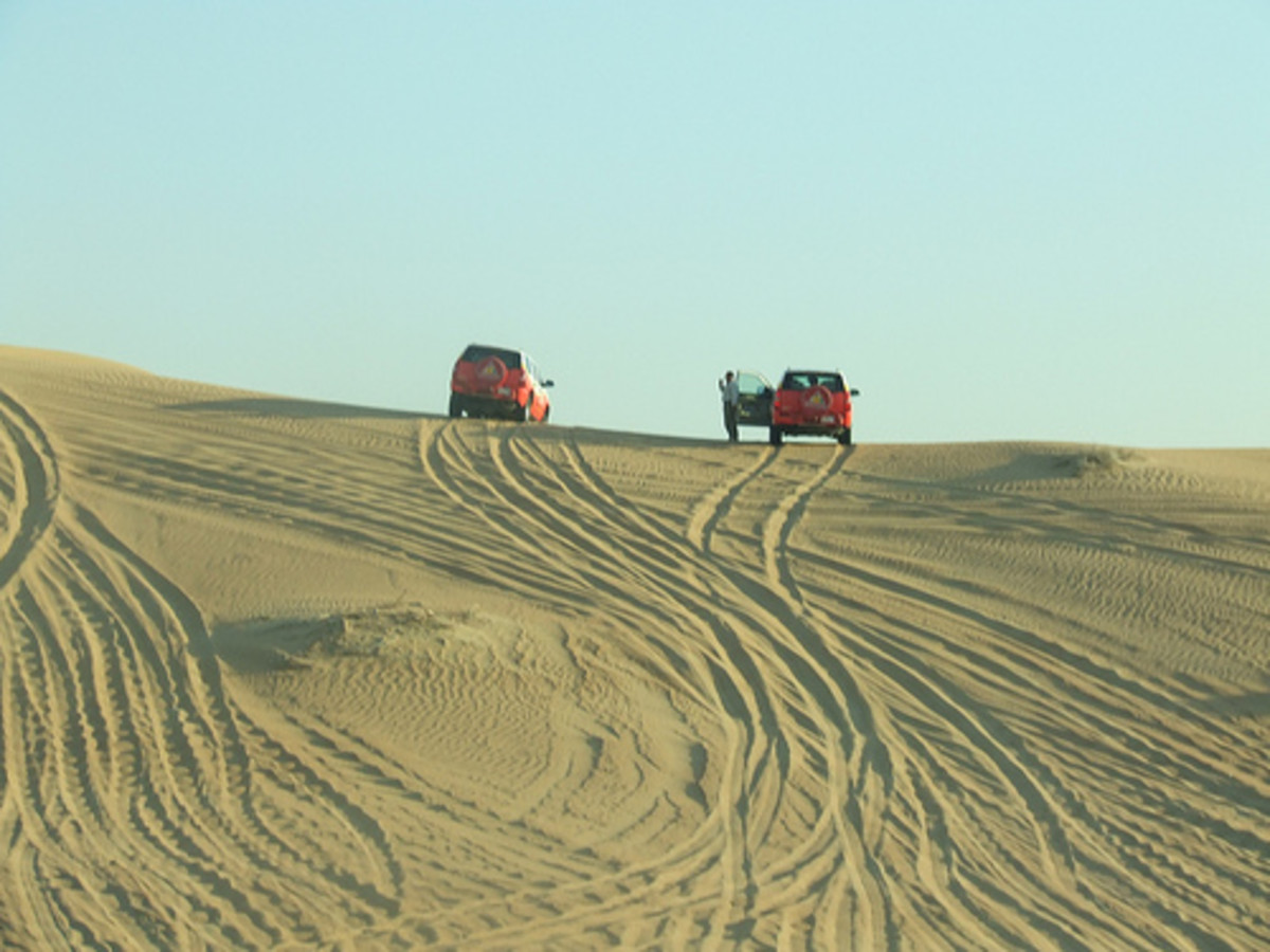 People having fun with the Arabian Desert Safari.