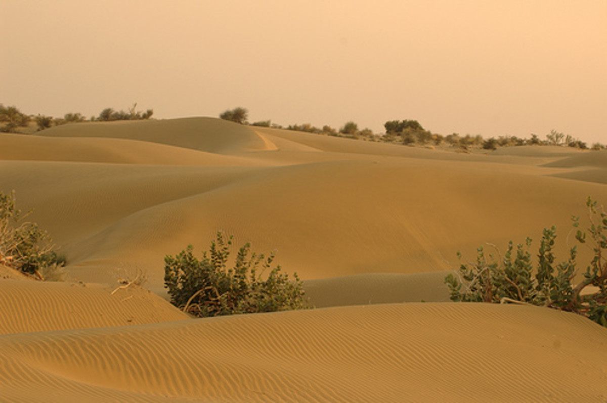 famous-deserts-of-the-world