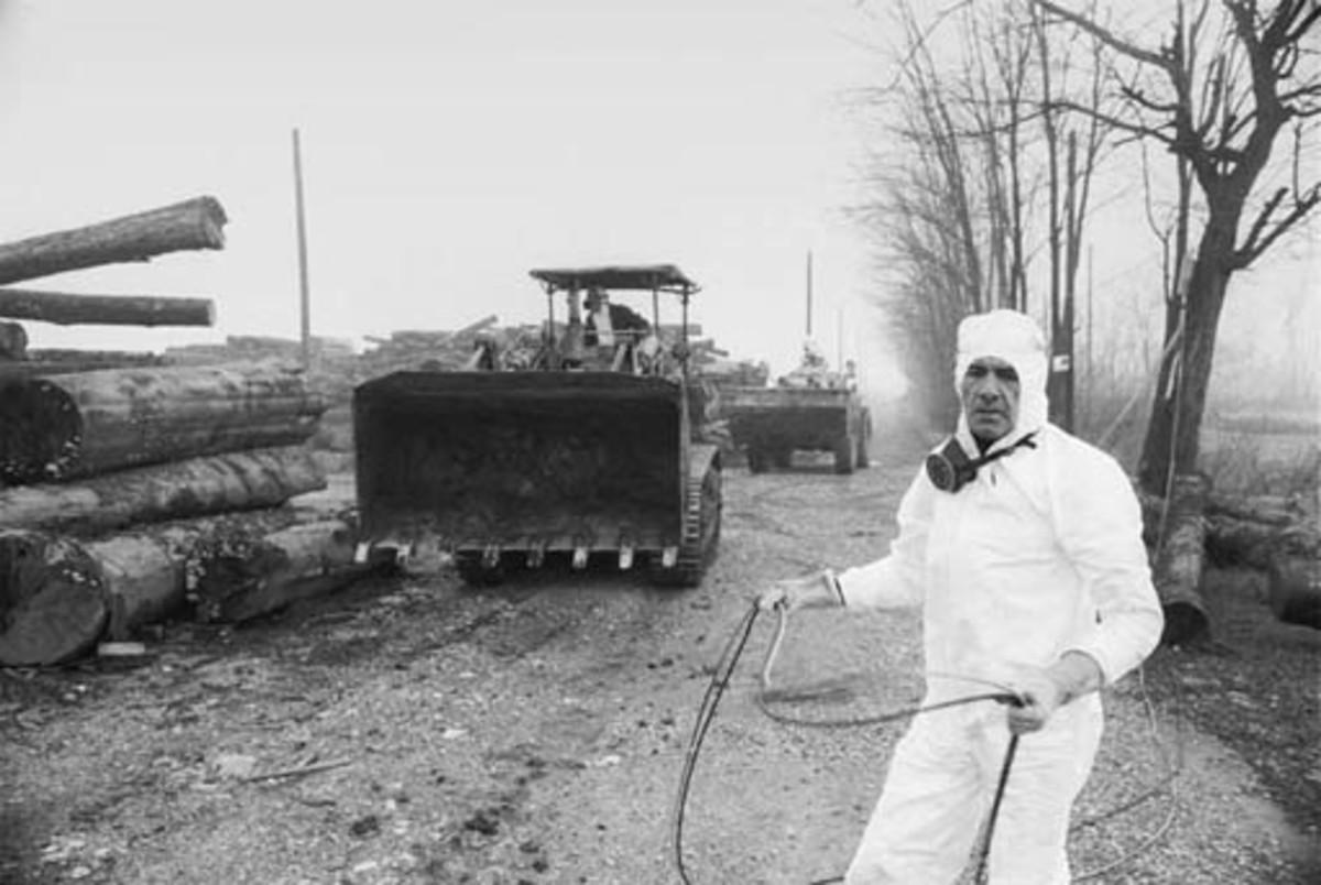Dioxin contamination - near Seveso, Italy: 1976 - Student ...