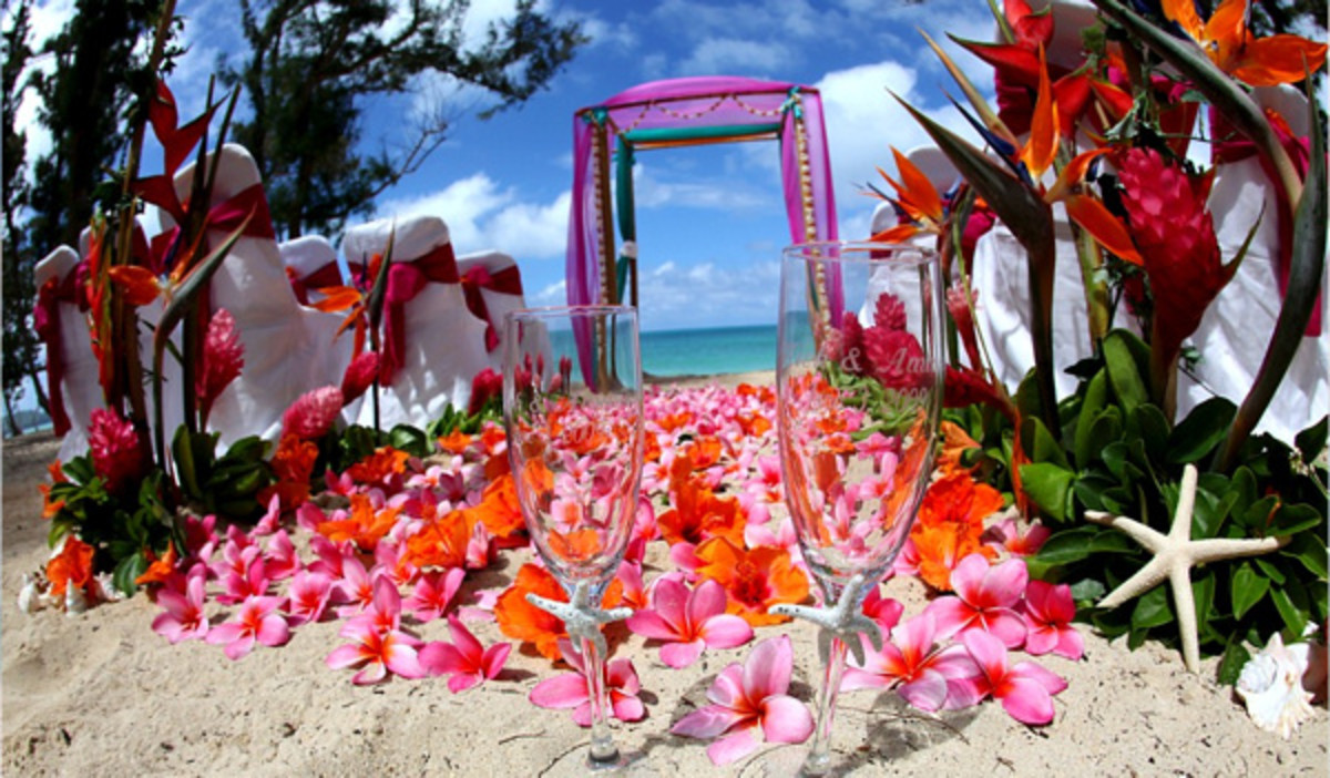 A Gorgeous Fuchsia Pink Beach Wedding Hawaiian Beach Wedding from Aloha