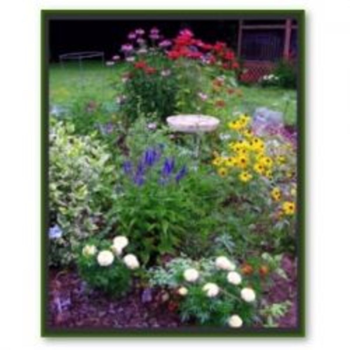 The lovely look of a riot of colors and plants give the cottage garden a lush appearance.