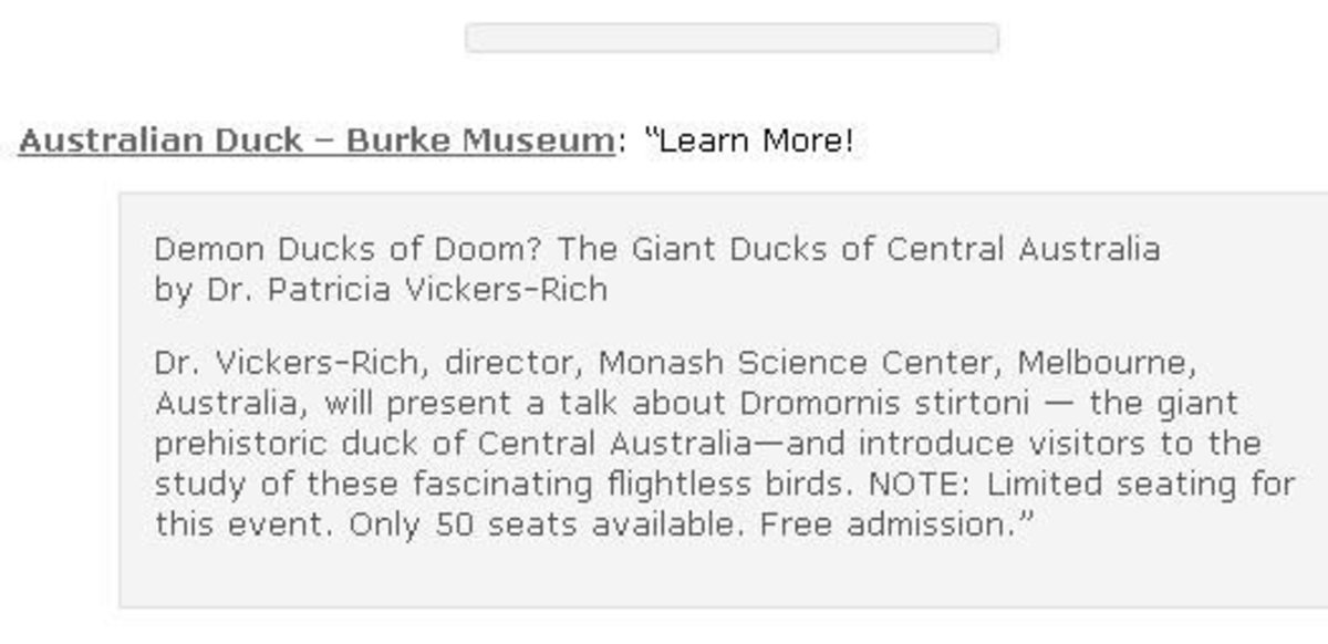 demon-ducks