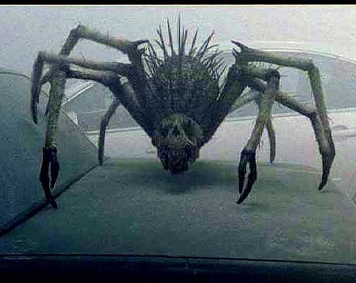 THE MIST Movie Creatures!!!