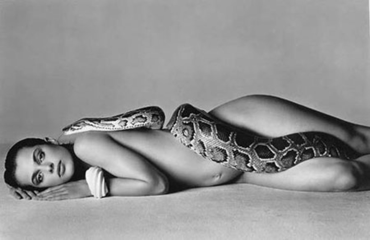 Avedon's famous shot from 1981 of Nastaassja Kinski and the serpent.
