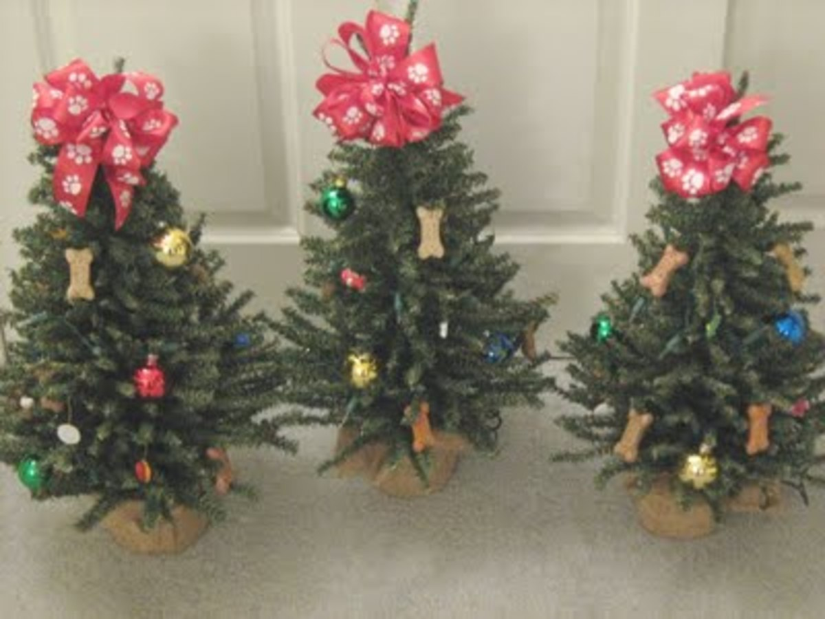 christmas-trees-for-your-pet
